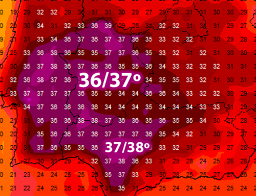 Por delante una semana de calor moderado, con temperaturas máximas de hasta 37ºC, pero sin valores demasiado extremos