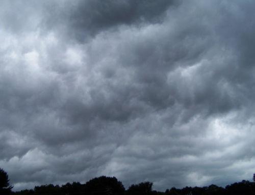 Avisos Meteorológicos: Nivel Amarillo por Vientos