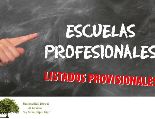 Publicadas las listas provisionales de preseleccionados para las escuelas profesionales