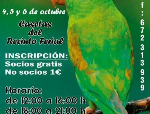 Organizan una nueva exposición ornitológica en Campanario