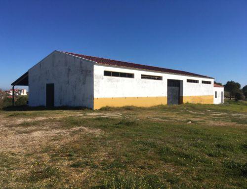 El Ayuntamiento de Campanario saca a licitación el arrendamiento del picadero municipal