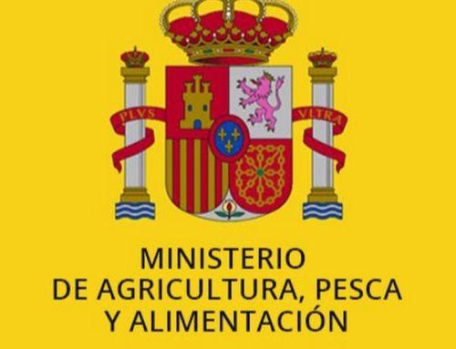 Ayudas directas para los ganaderos de ovino y caprino