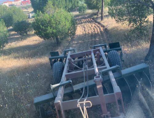 El Ayuntamiento mejora los cortafuegos en el paraje de 'El Ejido' de cara a la campaña de incendios