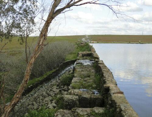 """Bando: Proyecto de reparación de la presa y adecuación del entorno del embalse """"El Paredón"""""""